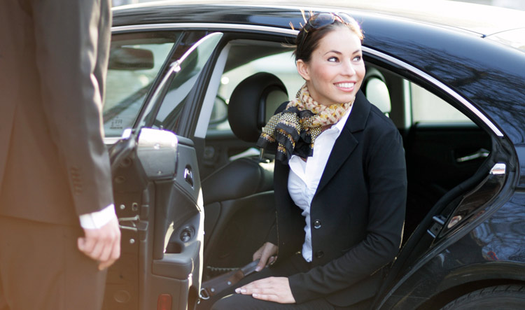 Private Transfer with a Professional Chauffeur in a Mercedes Viano, E-Class or S-Class